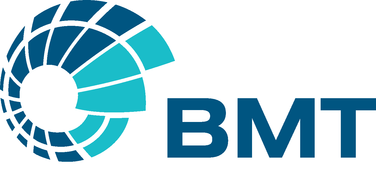 BMT logo only (RGB positive) 2
